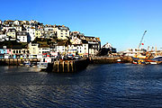 The harbour in Brixham